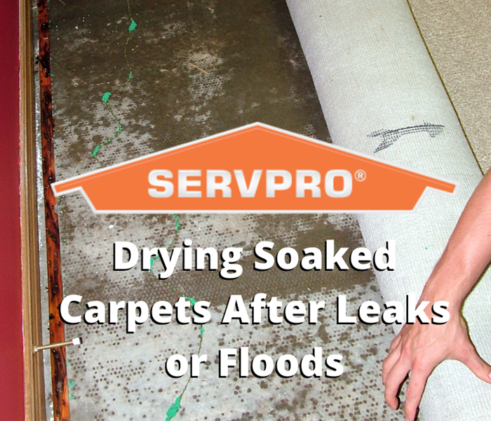 Drying soaked carpets
